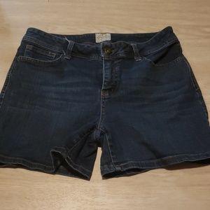 St. John's Bay shorts